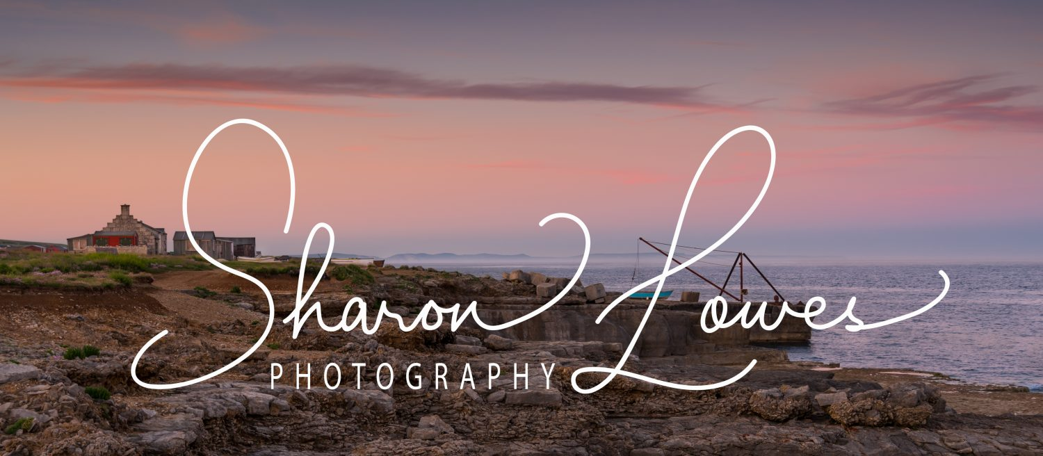 Sharon Lowes Photography